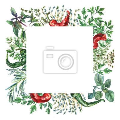 Cadre d'herbes et d'épices d'aquarelle. Cadre carré avec des objets alimentaires peints à la main: basilic, romarin, persil, origan, thym, aneth, noeud-herbe, poivre vert et rouge sur fond blanc.