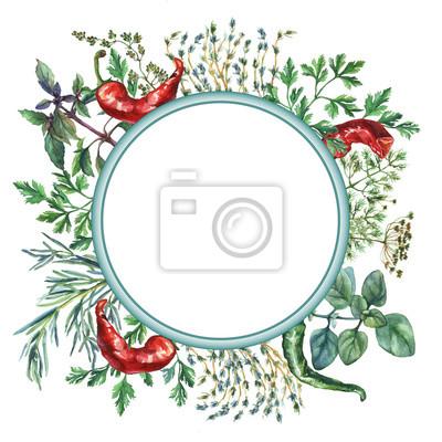 Cadre d'herbes et d'épices d'aquarelle. Cadre rond avec des objets alimentaires peints à la main: basilic, romarin, persil, origan, thym, aneth, noeud-herbe, poivre vert et rouge sur fond blanc.
