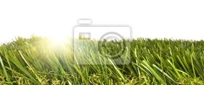 Papiers peints carré d'herbe artificielle avec le soleil brille à travers
