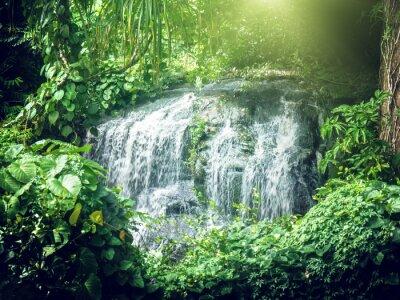 Papiers peints cascade dans la jungle des Seychelles, île de Mahe