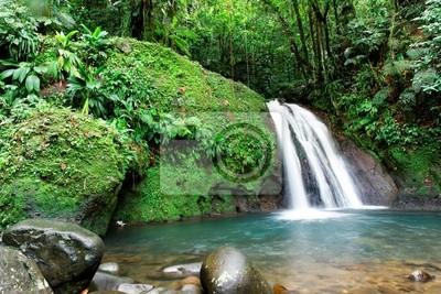 Cascade En Foret Tropicale Papier Peint Papiers Peints Martinique