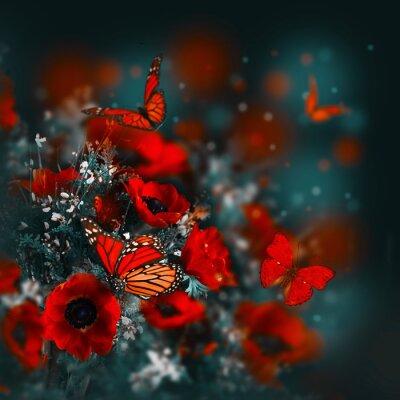 Papiers peints Champ de coquelicots et de l'herbe verte et le papillon