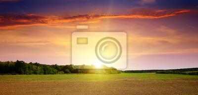 Papiers peints champ labouré et beau coucher de soleil