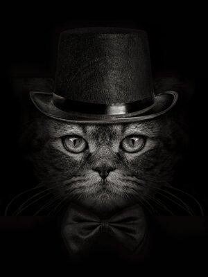 Papiers peints Chat sombre chat close-up dans un chapeau et cravate papillon