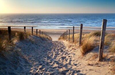 Papiers peints chemin de plage de la mer du Nord dans le soleil d'or