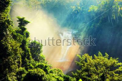 Papiers peints Chute d'eau cachée dans la jungle tropicale