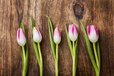 Papiers peints Cinq, rose, tulipes, bois, fond