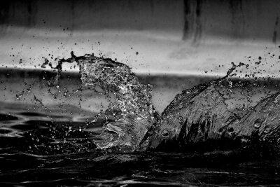 Papiers peints Close-up Of Water Splashing On Pool