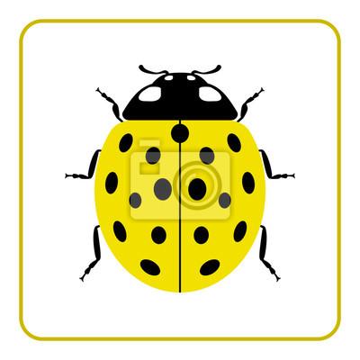 Coccinelle Symbole coccinelle petite icône. jaune, dame, bogue, signe, isolé, blanc