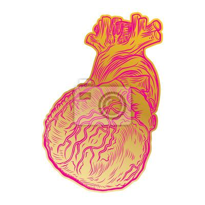 Papiers Peints Coeur Humain Anatomique De La Saint Valentin Imprimer Sur Le