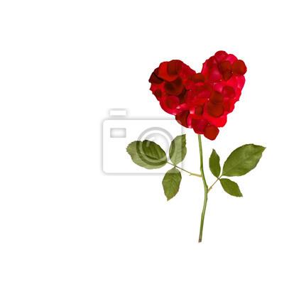 Papiers peints coeur rose