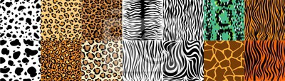 Papiers peints Collection of natural seamless patterns with coat, skin of fur textures of wild exotic animals - zebra, snake, tiger, leopard, giraffe. Flat vector illustration for wrapping paper, textile print.