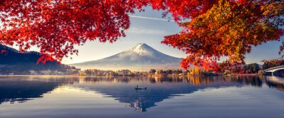 Papiers peints Colorful Autumn Season and Mountain Fuji with morning fog and red leaves at lake Kawaguchiko is one of the best places in Japan
