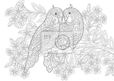 Coloriage Anti Stress Perroquet.Papiers Peints Coloriage De Deux Perroquets En Amour Et Fond Floral Avec Des