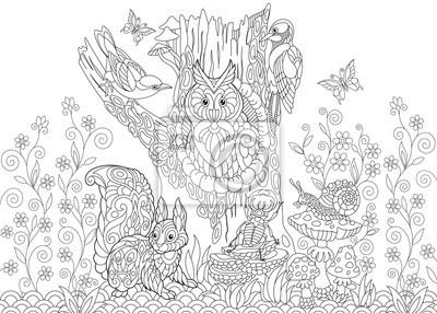 Coloriage Adulte Foret.Papiers Peints Coloriage Des Animaux De La Foret Hibou Oiseau Coucou Pic