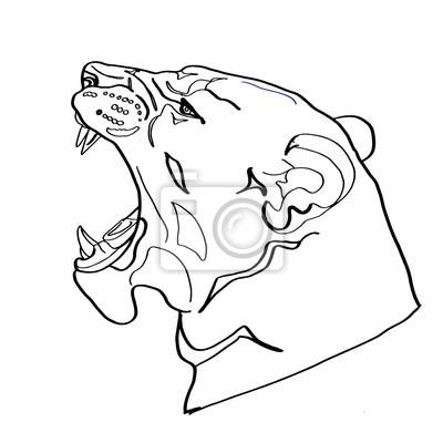 Coloriage Tete Panthere Papier Peint Papiers Peints Rugissement Fauve Mascotte Myloview Fr