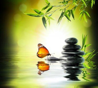 Papiers peints Concept exclusif délicate - papillon sur l'eau dans le jardin