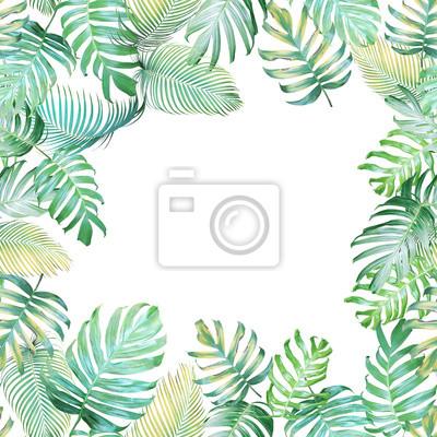 Contexte Tropical Avec Monstera Philodendron Et Feuilles De Palmier