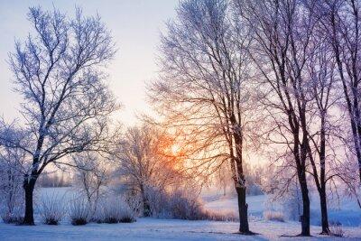 Papiers peints coucher de soleil d'hiver