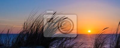 Papiers peints Coucher de soleil sur l'océan Atlantique, silhouette d'herbe de la plage à Lacanau France