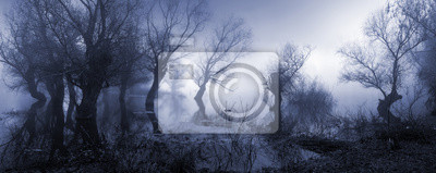 Papiers peints Creepy, paysage, projection, brumeux, sombre, marécage, automne.