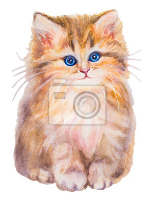 Cute  tabby cat with blue eyes on white background, sitting and looking up. Fluffy, sweet and pretty.  Hand drawn watercolour cat portrait, isolated, white background.