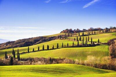 Papiers peints Cypress arbres route panoramique. Sienne, Toscane, Italie.