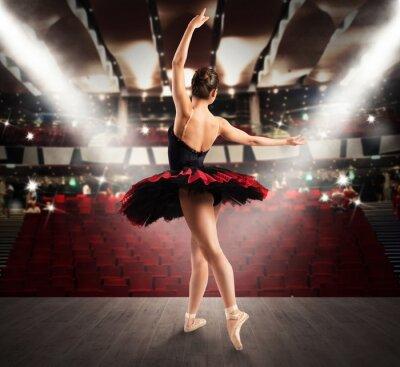 Papiers peints Danseur classique au théâtre