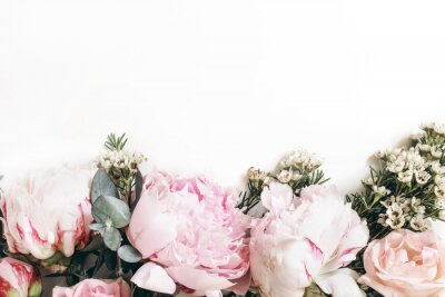 Papiers peints Decorative web banner made of beautiful pink peonies, rosies and eucalyptus isolated on white background. Feminine floral frame composition. Styled stock photo.Empty space. Flat lay, top view.