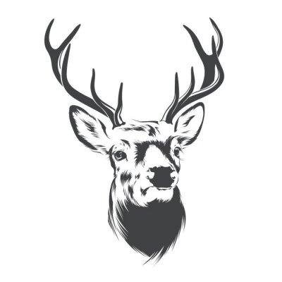 Papiers peints Deer Head