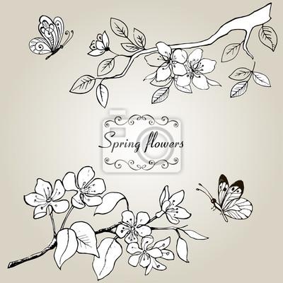 Definir Le Dessin Par Des Mains De Fleurs De Printemps Une Branche