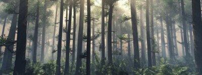 Papiers peints Des arbres dans le brouillard. La fumée dans la forêt le matin. Un matin brumeux parmi les arbres. Rendu 3D