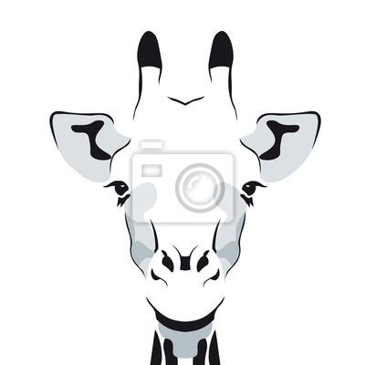 Dessin Dune Tete De Girafe Simple Silhouette Papier Peint