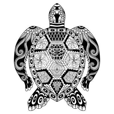 Tortue Tatouage Dessin Kolorisse Developpement