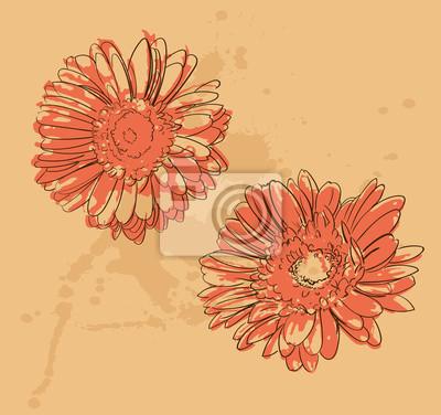 deux fleurs gerbera