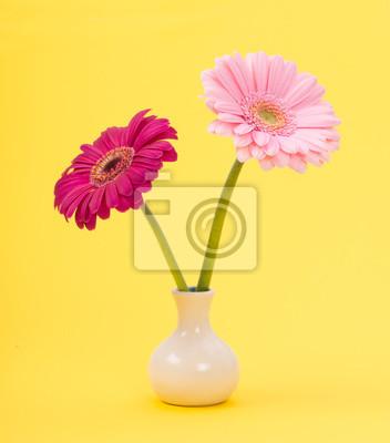 Deux, rose, gerber, marguerites, blanc, vase, jaune, fond