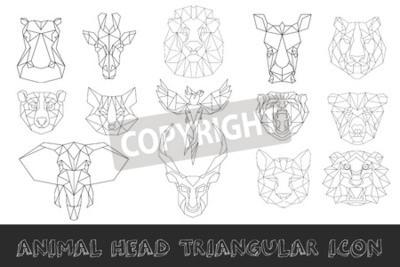 Devant Vue Animal Tete Triangulaire Icone Ensemble