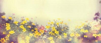 Papiers peints Divers, coloré, ressort, fleurs, lumière soleil, barbouillage, bannière, site ...