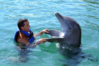 Papiers peints Dolphin Swim avec l'homme