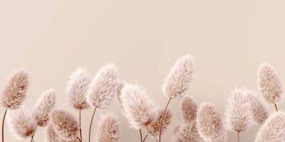 Papiers peints Dry fluffy flowers beige pastel color boho background 3d rendering. Abstract Pampas grass isolated - calm floral wallpaper.