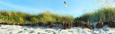 Papiers peints dunes de la plage - Panorama