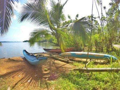 Papiers peints Ein blaues Katamaran se trouve sur la plage de Sri Lanka