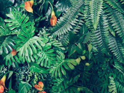 Papiers peints Élégant, vert, jungle, Été, fond - exotique, vendange, tonalité