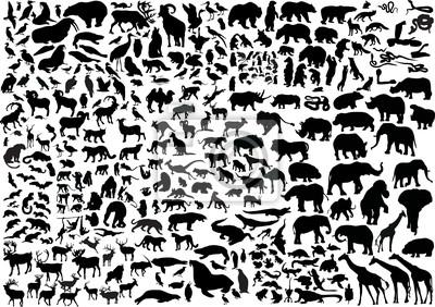 Papiers peints énorme collection de silhouettes d'animaux