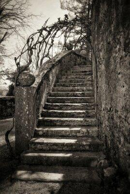 Papiers peints escaliers anciens
