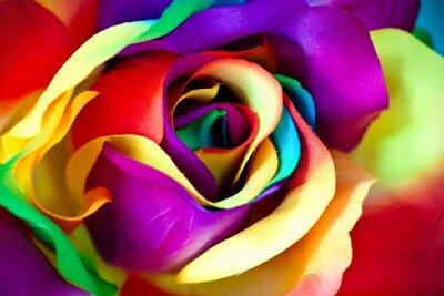 Papiers peints faux fleur rose