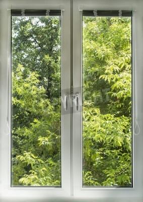 Papiers peints Fenêtre blanche fermée donnant sur le jardin vert