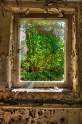 Papiers peints Fenêtre sur le jardin
