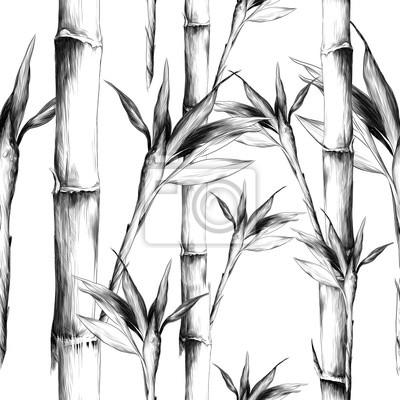 Papiers Peints Feuilles Branches Tige Bambou Modèle Fleurs Texture Cadre Sans