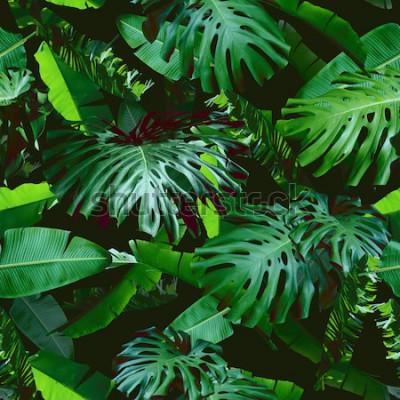 Papiers peints Feuilles florales tropicales couleur transparente motif vert sur un fond noir de la jungle. Collage photo naturel de couleur verte. Conception artistique pour les imprimés floraux et le papier peint m